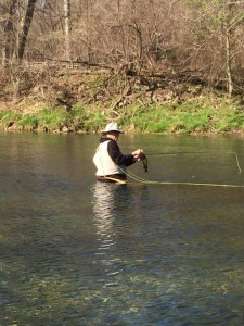 Man fly-fishing trout in stream