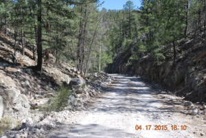 Rough road in the Black Range mountains of New Mexico