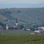 View from the Oppenheim vineyards onto Oppenheim and the Rhine