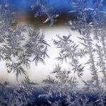 ice flowers on window