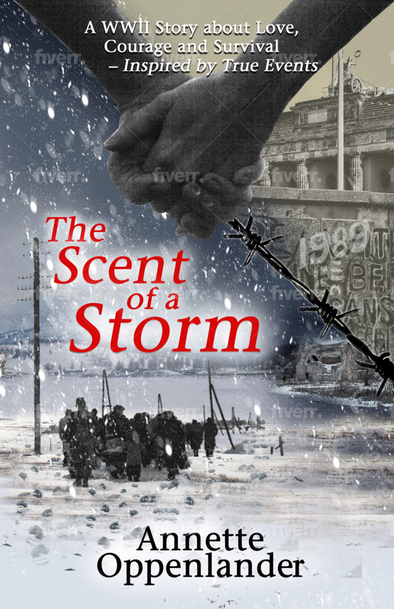 book cover WWII novel